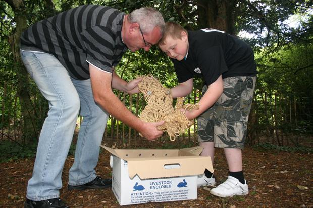Greg and Ciaran rescue a Macramé Owl in the wild